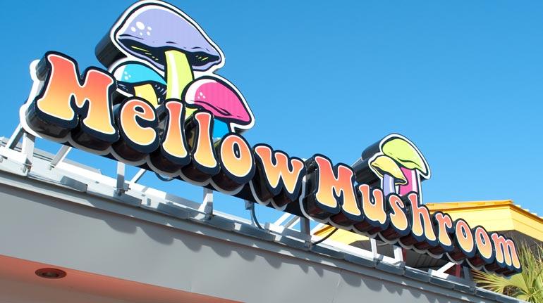 Mellow Mushroom, Myrtle Beach, SC